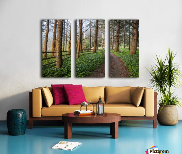 memory lane Split Canvas print