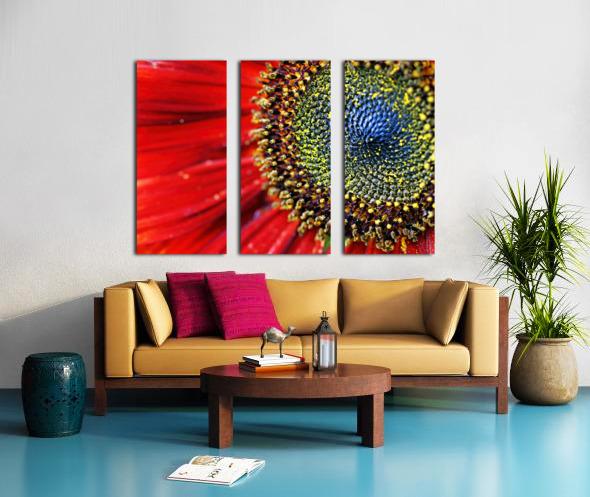 Spiral Center Of Sunflower Split Canvas print