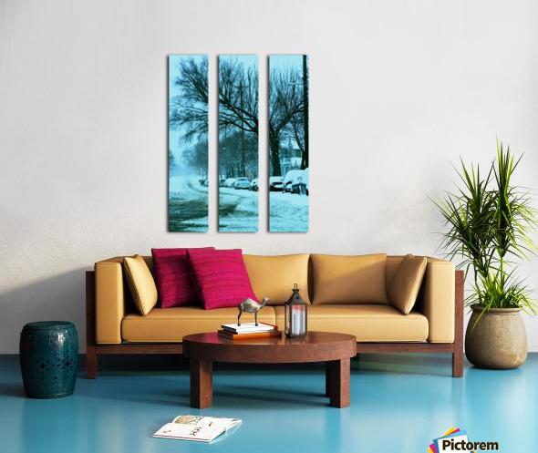 Frost Split Canvas print