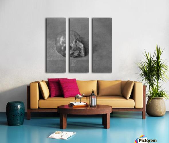 Skull Split Canvas print