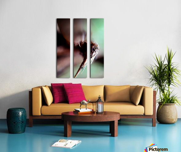 Abstract Macro Nature Photography 146 Split Canvas print