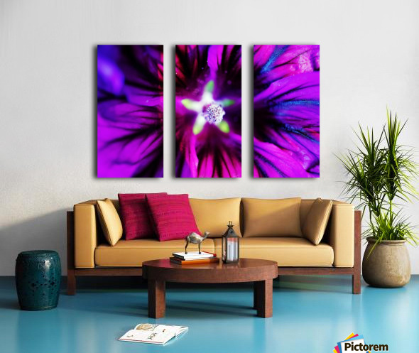 Abstract Pop Color Flower Photography 38 Split Canvas print