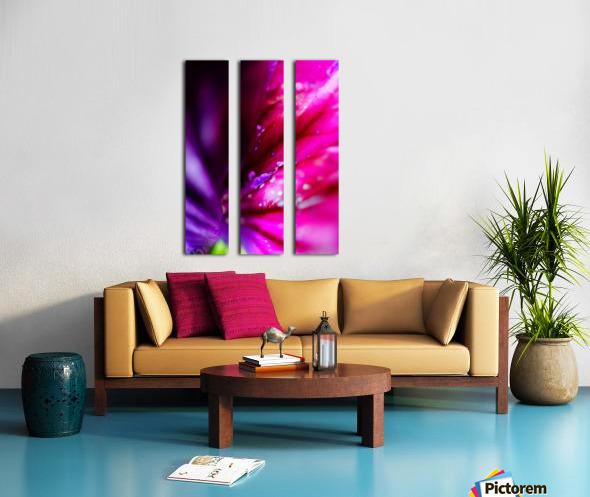 In between colorful flowers Split Canvas print