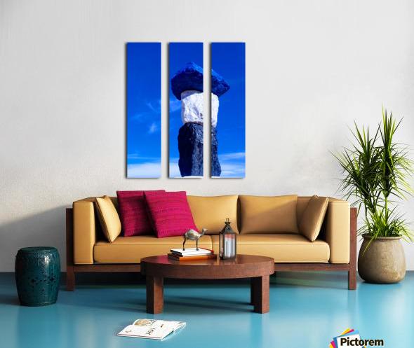 IMG_20190309_144914585 Split Canvas print