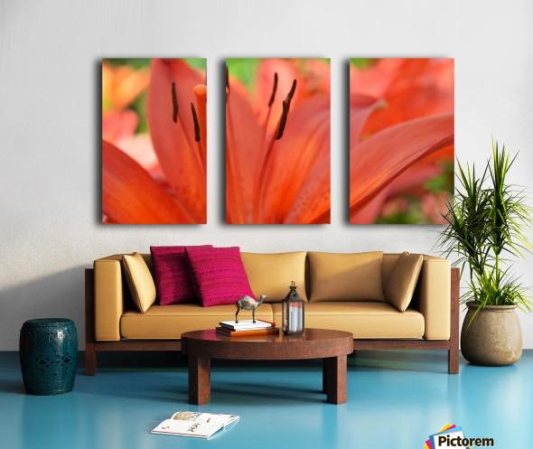 Beautiful In Orange Photography Split Canvas print