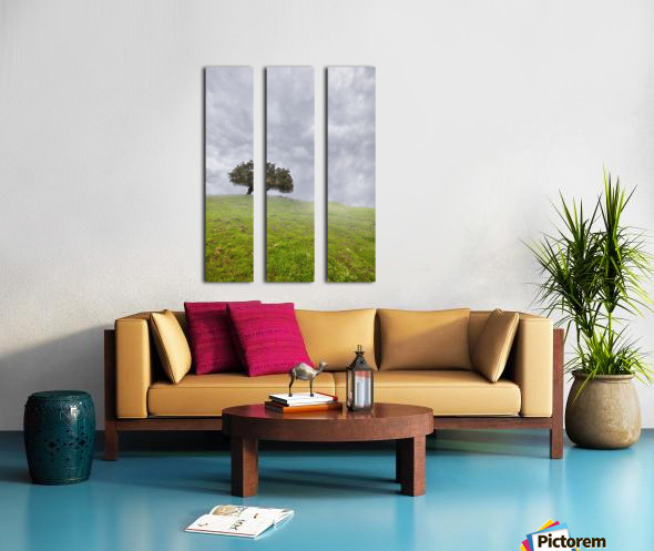 Enmeshed Split Canvas print