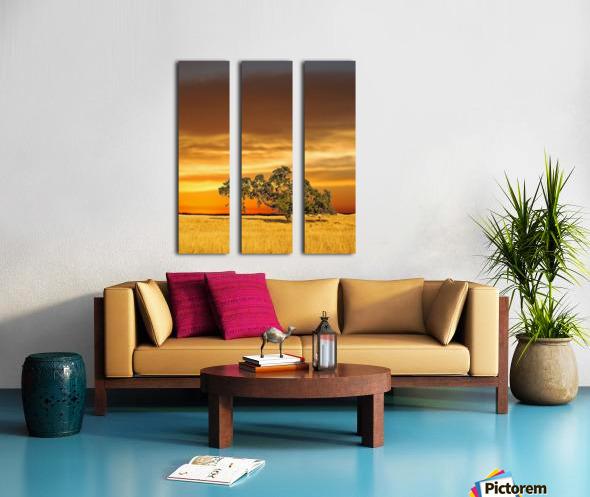 FireGold Split Canvas print