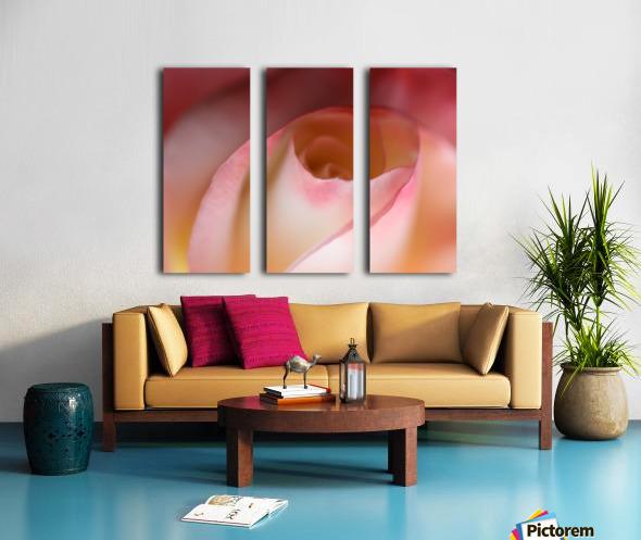 Intimate Rose Split Canvas print