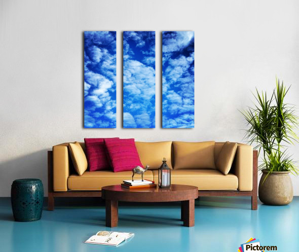48789057208_143339dbb6_o Split Canvas print