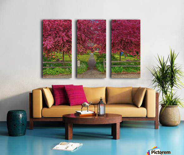 pinkdream1 Split Canvas print