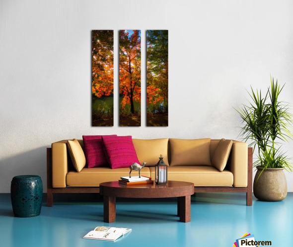 A fall colors tree Toile Multi-Panneaux