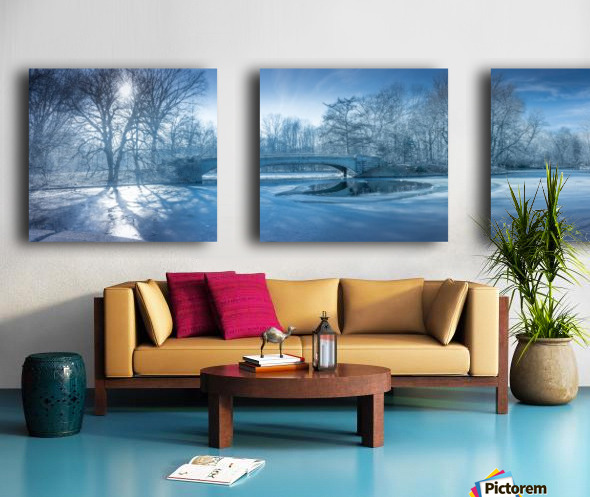 A winter day in the Prospect Park Split Canvas print