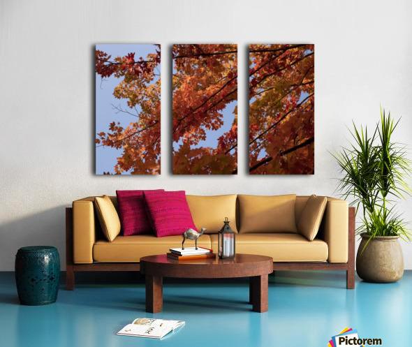 Autumn tree Split Canvas print