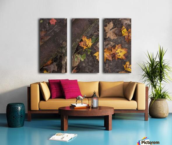 Fallen Leaves Split Canvas print