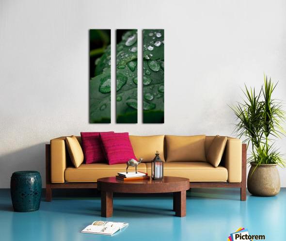 After rain Split Canvas print