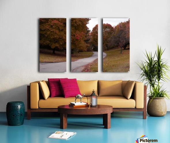 Autumn in the park Split Canvas print