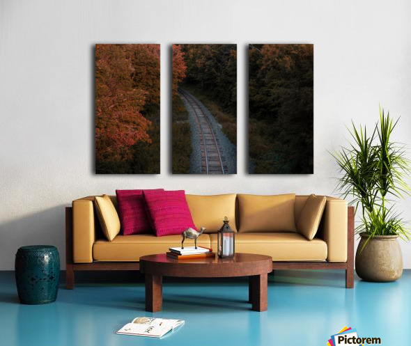 Train track Split Canvas print