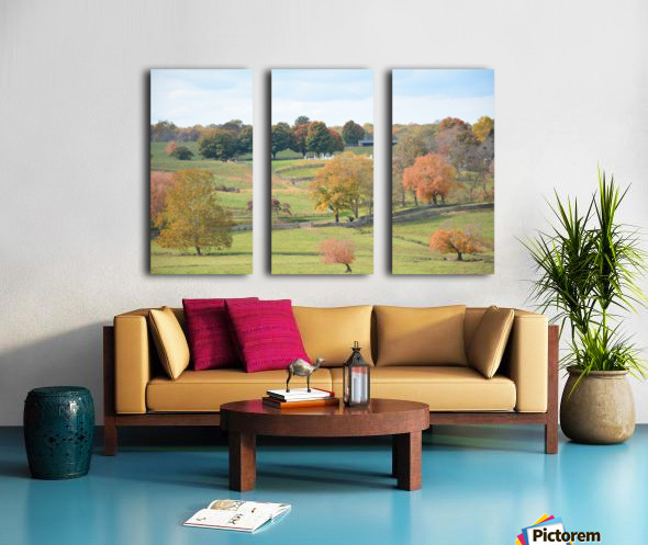Fall Foliage In Virginia Photograph Split Canvas print