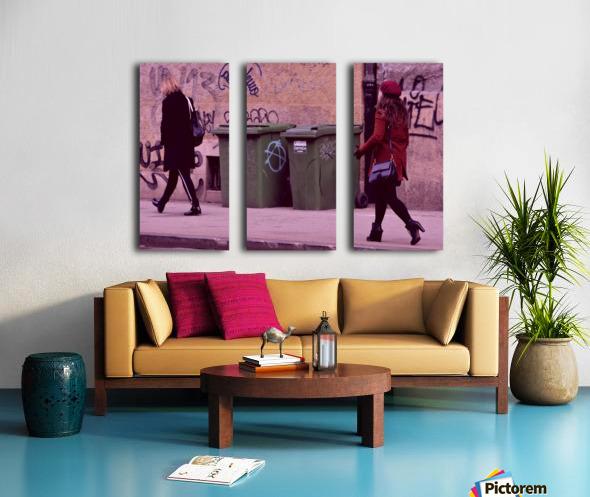 Chase Split Canvas print