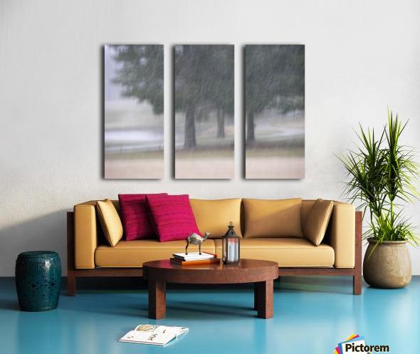Soft Snow Fall Photograph Split Canvas print