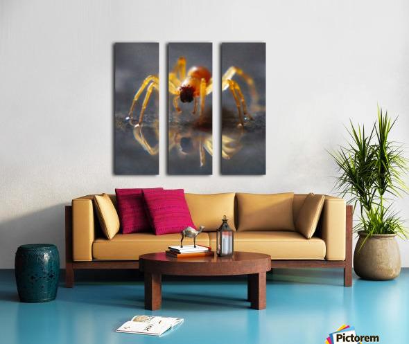 Spider reflecting Split Canvas print