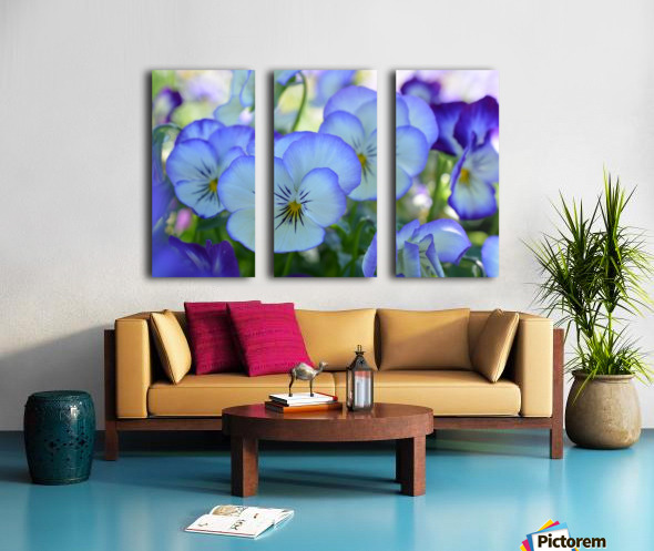 Blue Flower Garden Photograph Split Canvas print