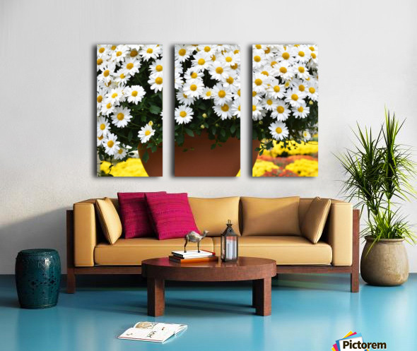 White Flowers In Hanging Pot White Flowers Canvas Print White Flowers Photograph 889 Split Canvas print