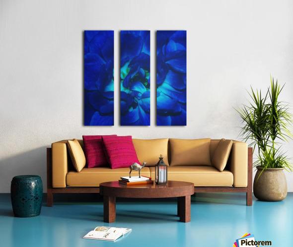 Blue Rose    Split Canvas print
