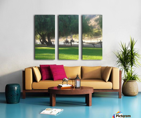 Horses at the park summertime  Split Canvas print