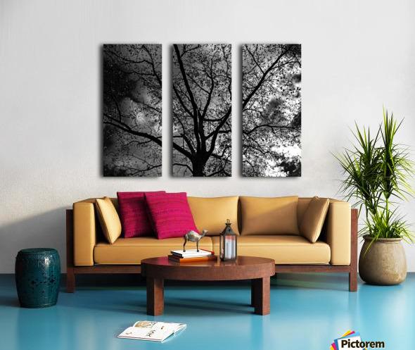 _1150920_1572477007.8786 Split Canvas print