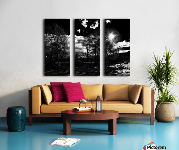 _1150905_1572477085.9517 Split Canvas print