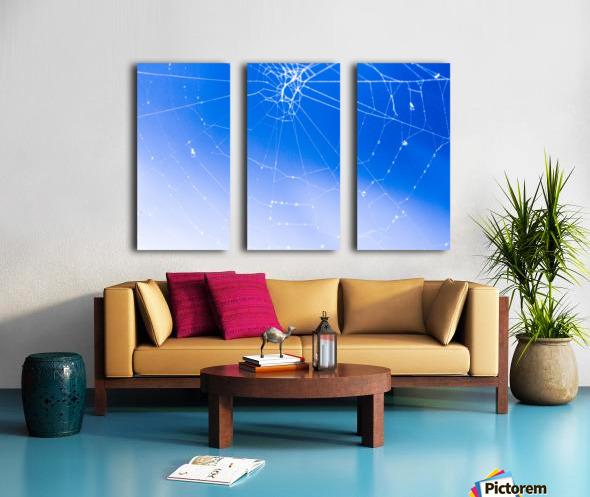 IMG_1629 (3) Split Canvas print