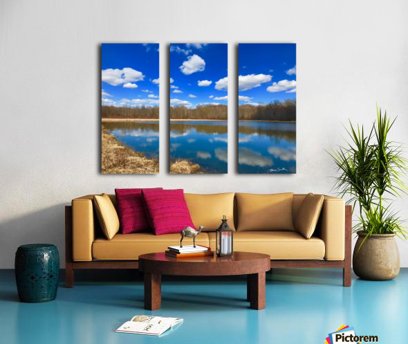 Pond Reflections Split Canvas print