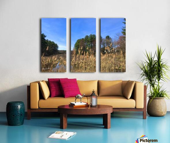 Simsbury Wetland Split Canvas print