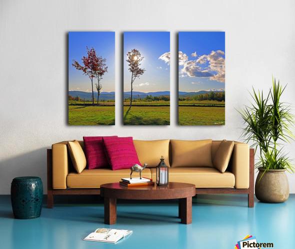 Jericho Meadow Split Canvas print