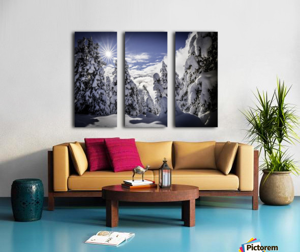 Kootenay Alpine Snow Split Canvas print