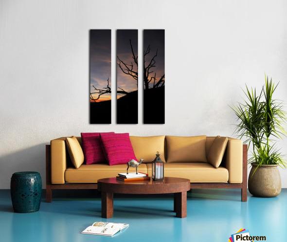 New Mexico Sunrise Split Canvas print