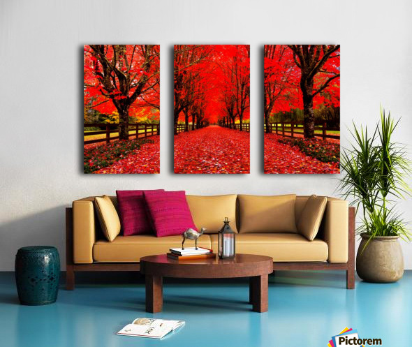 Red Carpet Split Canvas print