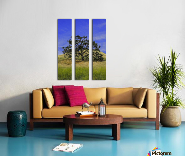 LoneMan Split Canvas print