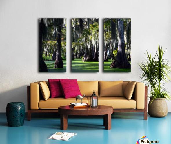 Swampy Split Canvas print