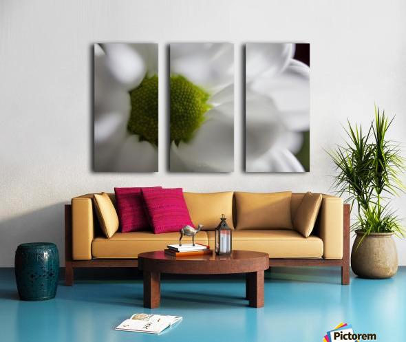 Purete Split Canvas print