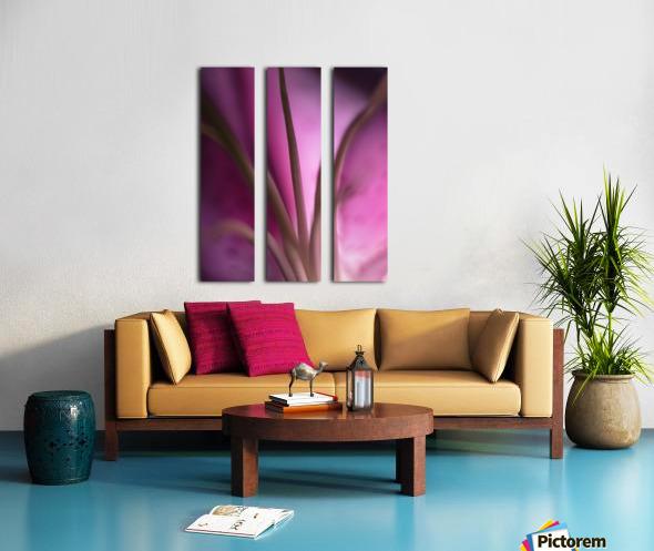 Pinky 4 Split Canvas print