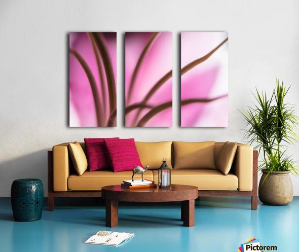 Pinky 3 Split Canvas print