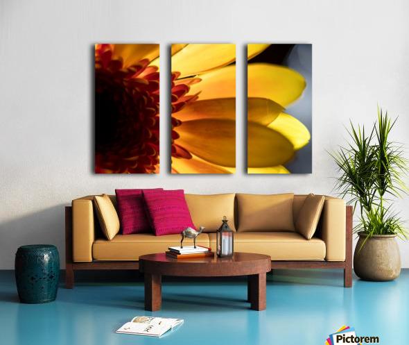 Jaune 3 Split Canvas print