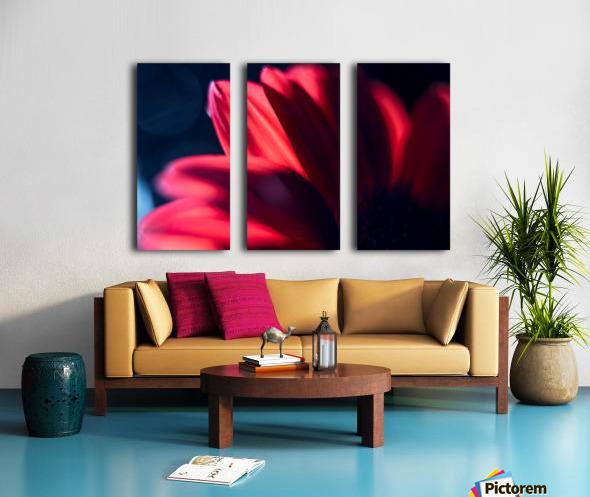 Red 1 Split Canvas print