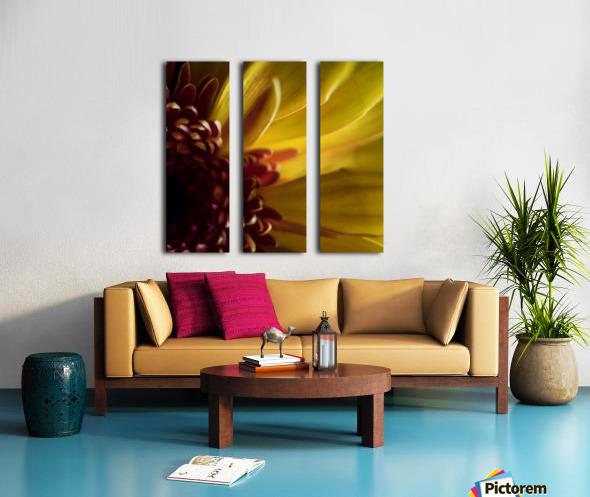 Jaune 2 Split Canvas print
