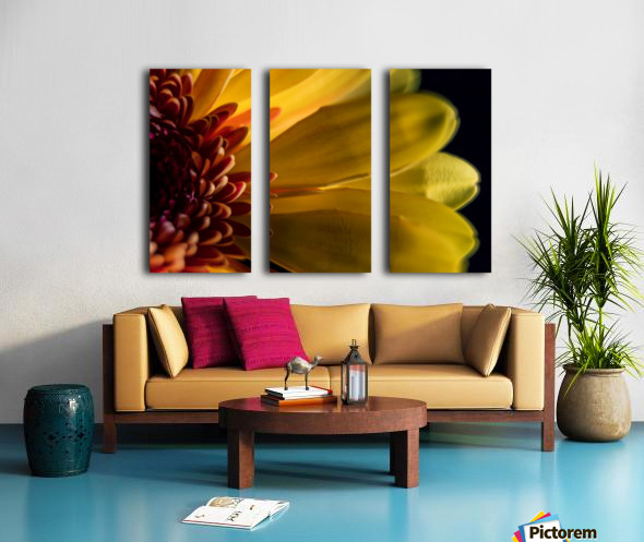 Jaune 1 Split Canvas print