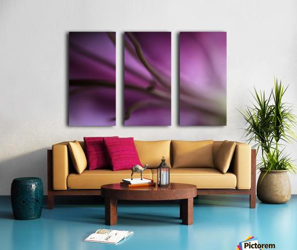 Pinky 1 Split Canvas print