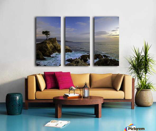 Forever Alone Split Canvas print
