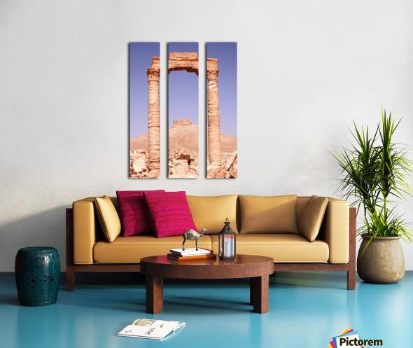 Palmyra Split Canvas print